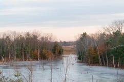 Una trayectoria del río con los árboles imagen de archivo