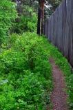 Una trayectoria en el bosque del verano lleva a lo largo de una alta cerca de madera Fotografía de archivo