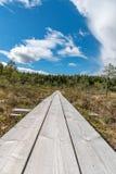 Una trayectoria hermosa a través de un gran pantano en Storfors Suecia Imagen de archivo