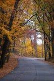 Una trayectoria magnífica de árboles brillantemente coloreados en otoño en Morton Arboretum foto de archivo
