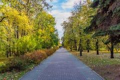 Una trayectoria pavimentada con las losas grises y rojas con un grupo de personas y hojas del amarillo entre árboles y los arbust foto de archivo libre de regalías