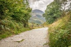 Una trayectoria que lleva a través de un campo hacia bosque y las montañas fotos de archivo