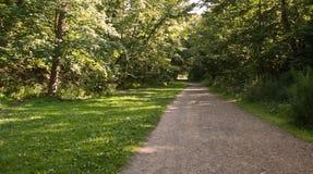 Una trayectoria a través en el bosque Imagen de archivo libre de regalías