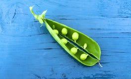 Una vaina de guisante abierta madura con las habas verdes en ella Fotos de archivo libres de regalías