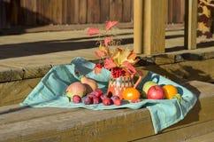 Una variedad de frutas y verduras del otoño Imágenes de archivo libres de regalías