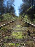 Una vecchia ferrovia Fotografia Stock