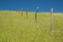 Una vecchia rete fissa del filo si leva in piedi da solo nell'erba Immagine Stock Libera da Diritti