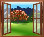 Una ventana abierta con vistas al árbol grande Fotos de archivo libres de regalías