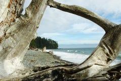 Una ventana de madera natural con la opinión de la playa Imagen de archivo