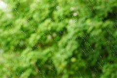 Una ventana en gotitas de la lluvia oblicua abstraiga el fondo Imagen de archivo