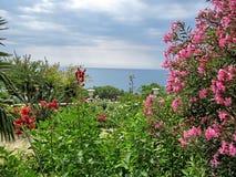una veranda in fiori con una vista di oceano Immagine Stock Libera da Diritti