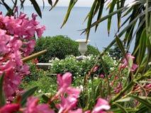 una veranda in fiori con una vista di oceano Fotografia Stock Libera da Diritti