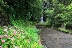 Una via della montagna che conduce ad una cascata misteriosa fotografia stock libera da diritti