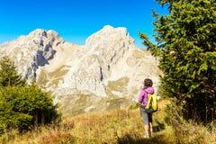 Una viandante della donna su una traccia nelle alpi Fotografia Stock