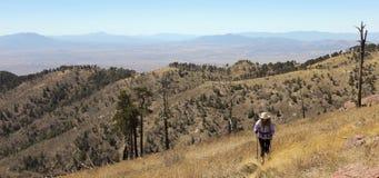 Una viandante fa il suo modo su un pendio di montagna Immagini Stock Libere da Diritti