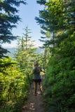Una viandante femminile bionda fa il suo modo attraverso la foresta sulla traccia del lago mirror nel supporto Hood National Fore immagini stock libere da diritti