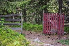 Una vieja puerta roja en el bosque foto de archivo