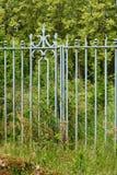Una vieja puerta verde y una cerca del arrabio  imagen de archivo libre de regalías
