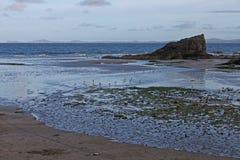 Una visión abajo de la trayectoria a las arenas de Marloes, Pembrokeshire Fotografía de archivo libre de regalías