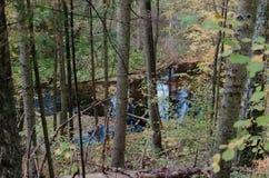 Una visión desde arriba de una colina en un río a través de árboles Imagen de archivo