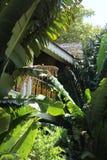 Una visión sobre la casa de Bonnett en Fort Lauderdale Imagen de archivo