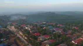 Una vista aérea de la plantación de la palma en Felda Pemanis metrajes