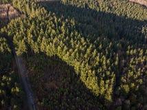 Una vista aérea del bosque de Haldon en Devon, Reino Unido foto de archivo libre de regalías