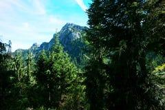 Una vista alpina Fotografia Stock