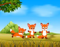 Una vista awasome con la volpe funziona con il loro amico nel safari illustrazione di stock