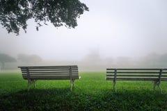 Una vista da dietro i due banchi in un bello paesaggio verde sopra immagini stock