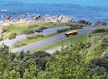 Una vista dal livello qui sopra della banca delle rocce della baia di Lyall, Wellington, Nuova Zelanda immagini stock libere da diritti