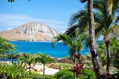Una vista dal parco di vita di mare su Oahu dell'isola del coniglio Fotografia Stock
