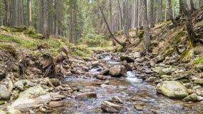 Una vista de una corriente de la montaña que fluye abajo de una cuesta de piedras Fotos de archivo libres de regalías