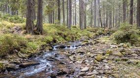 Una vista de una corriente de la montaña que fluye abajo de una cuesta de piedras Imagen de archivo