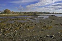 Marea baja de Searsport Maine Imagen de archivo libre de regalías