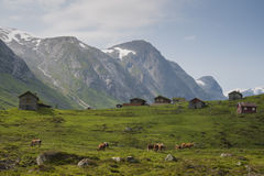 Una vista de la naturaleza de Noruega Imagenes de archivo