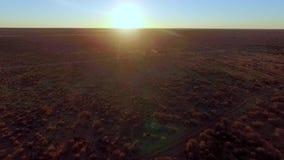 Una vista de la sabana iluminada por el sol en Namibia metrajes