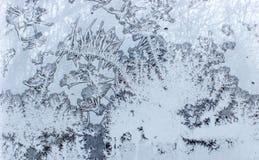 Una vista de las ramas de árbol a través de la ventana congelada 3 fotografía de archivo libre de regalías
