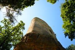 Una vista de las ruinas de la torre del castillo en el medio de bosques del ` s de Europa Foto de archivo libre de regalías