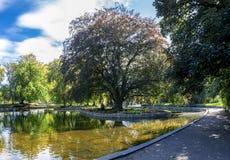 Una vista de una pequeña charca baja en el centro del parque de Duthie, Aberdeen imagen de archivo