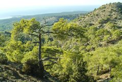 Una vista de poner en contraste costero y del paisaje de la ladera en Chipre meridional imágenes de archivo libres de regalías