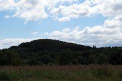Una vista del campo con alta erba Fotografie Stock