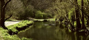 Una vista del fiume Fotografia Stock Libera da Diritti
