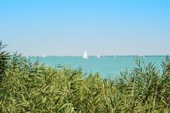 Una vista del lago Balaton con gli yacht bianchi all'orizzonte e al wate Fotografia Stock