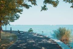 Una vista del lago Balaton con gli yacht bianchi all'orizzonte ed all'albero Fotografia Stock Libera da Diritti