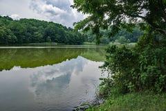 Una vista del lago mountain fotografia stock libera da diritti