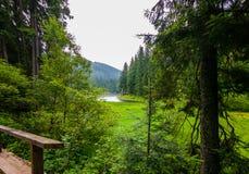 Una vista del lago nell'alta montagna verde di distanza Un posto per resto della famiglia Immagini Stock Libere da Diritti