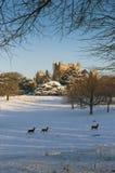 Una vista del museo e dei giardini elisabettiani di Wollaton Corridoio nella neve nell'inverno a Nottingham, 3 dicembre occors No fotografia stock libera da diritti