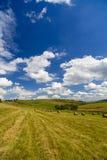 Una vista del paesaggio del raccolto in Rolling Hills in Romania con rotondo Fotografia Stock Libera da Diritti