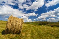 Una vista del paesaggio del raccolto in Rolling Hills in Romania con rotondo Immagine Stock Libera da Diritti